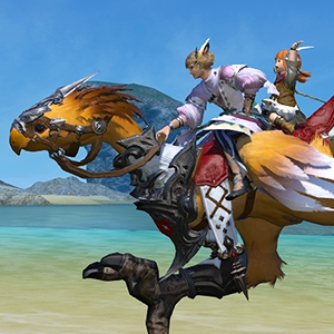 Whether you're braving the depths of dangerous dungeons, harvesting the realm's natural bounties, or taking in sweeping vistas, your adventures in Eorzea will be that much more rewarding together with your friends.