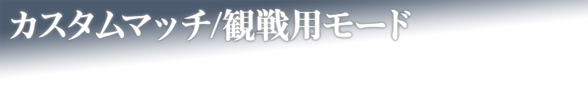 カスタムマッチ/観戦用モード