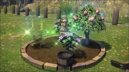 Jardinage funisall for Site jardinage