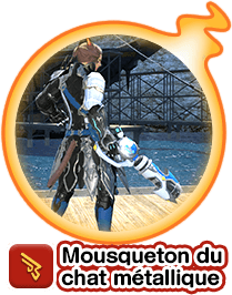 Mousqueton du chat métallique
