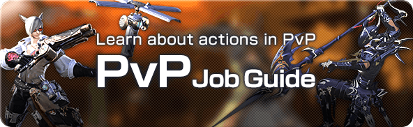 PvP Job Guide