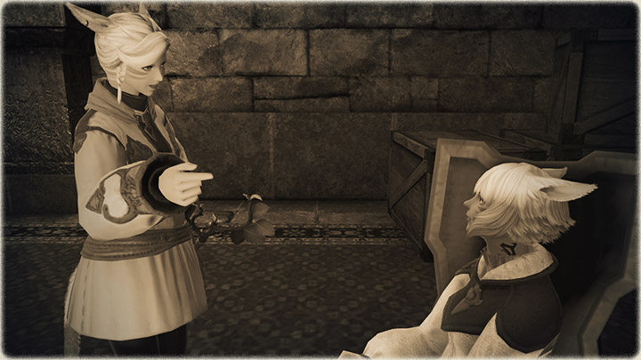 Tales from the Storm | FINAL FANTASY XIV, The Lodestone