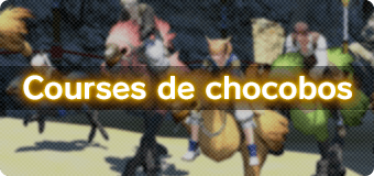 Courses de chocobos