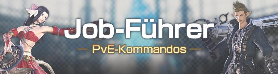 PvE-Kommandos