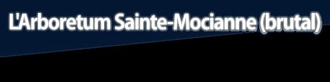L'Arboretum Sainte-Mocianne (brutal)