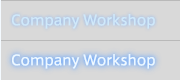 Company Workshop