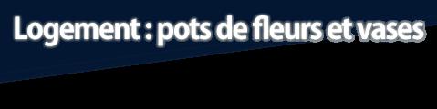 Logement : pots de fleurs et vases