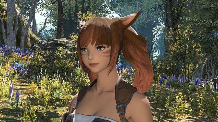 Final Fantasy Xiv A Realm Reborn A Realm Awoken Ffxiv