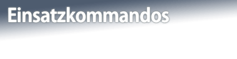 Einsatzkommandos