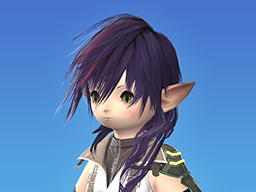 New Optional Items Available Final Fantasy Xiv The Lodestone